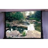 Draper Signature or Series V - HDTV Format Electric Projector Screen