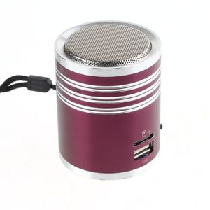 Mini Speaker MP3 Player Amplifier Micro SD TF Card USB Disk FM Radio Purple