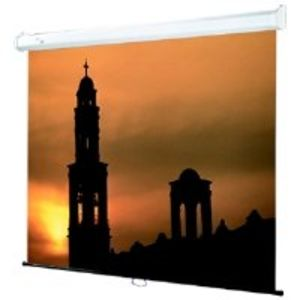 "Draper 207009 Draper Screen 100"" Roll"