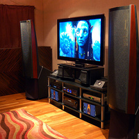 Martin Logan Prodigy mains, Martin Logan Cinema center and a Danley Sound Labs DTS-10 subwoofer.