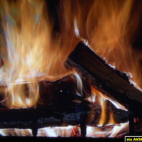 Yule Log - Christmas 2005