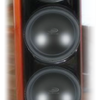 "LTD02's photos in Two bass towers with three LMS 15 ""in each"