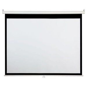 SCREEN, 100, MANUAL, MATTE WHITE