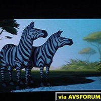 Fantasia 2000 DVD projected on a Proxima DS-2 DLP projector.