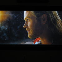 Thor, hopeful.JPG