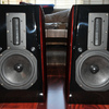 chefwong's photos in Aurum Cantus Leisure 3 SE Monitors
