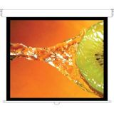 New - Optoma Panoview DS-3100PMG Manual Projection Screen - DS-3100PMG+