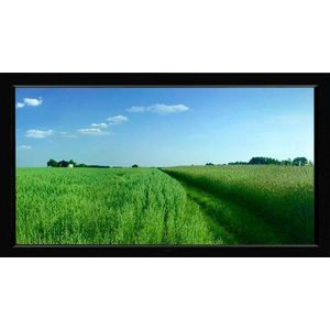 ProScreens 135 inch 16:9 Aspect ProScreen's Fixed Mount Projection Screen