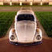 71sbeetle profile picture