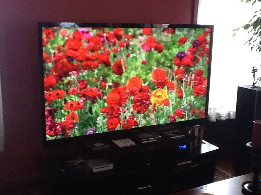 My Sony Bravia 65 inch LED TV.
