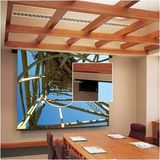 Draper 112163 Envoy Motorized Front Projection Screen - 70 inch x 70 inch