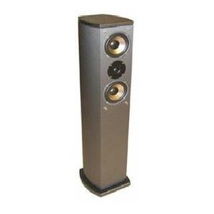 ANV AV-515FC, Champagne Finish Floor-Standing Loud Speaker, Buy 1 get 1 free