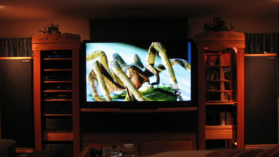 "Sharp Elite 70"" Showing Monster Bug Wars on Science HD via Direct TV"