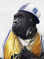 Bass Gorilla profile picture