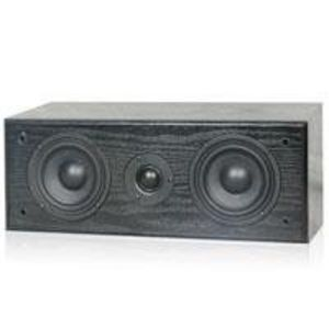 Technical Pro 200-Watt Center Speaker - SP2C