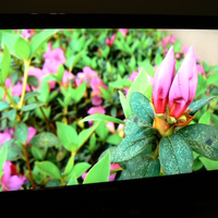 This is my home theater.  I take big pride in my work on this.  It's not complete, but it has amazing capabilities.