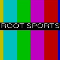 Root Sports Color Bars