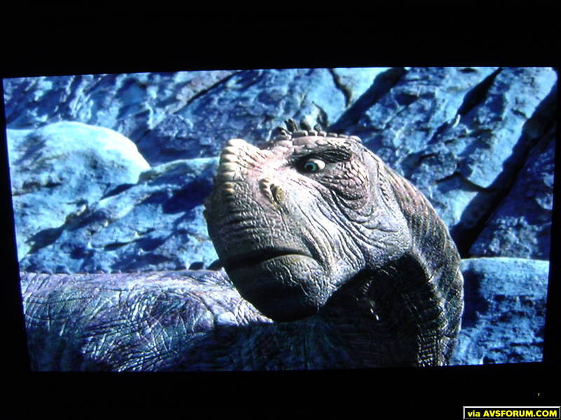 Sample screenshots of Dinosaur DVD