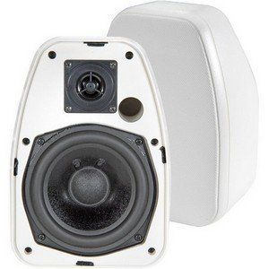 BIC America ADATTODV-52SIW Indoor/Outdoor Speaker