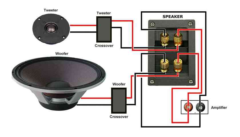 Remee Speaker Wire Vs Audioquest Or Other Brand Avs