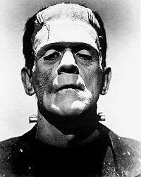 File source: http://commons.wikimedia.org/wiki/File:Frankenstein%27s_monster_(Boris_Karloff).jpg