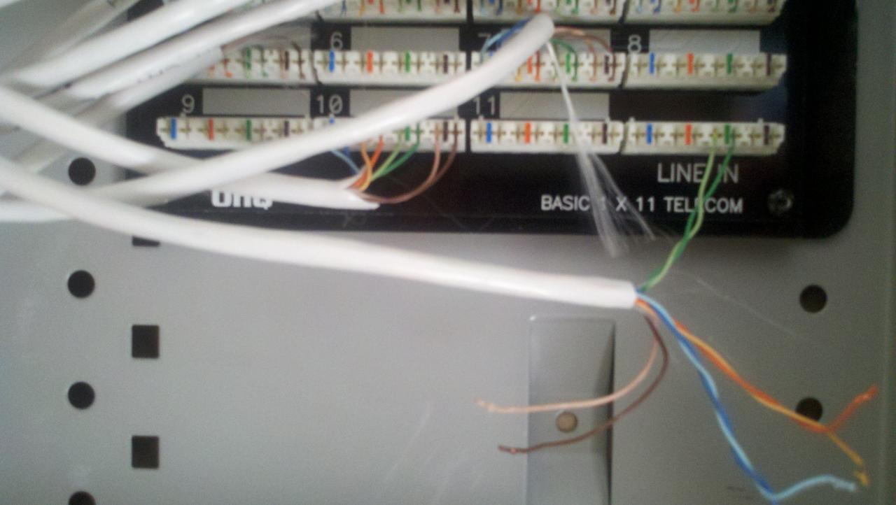 Cat5 Wiring Box Great Installation Of Diagram Cat 5 For Internet Telephone Junction Library Rh 10 Budoshop4you De A